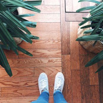 Plants in Luxury Apartment